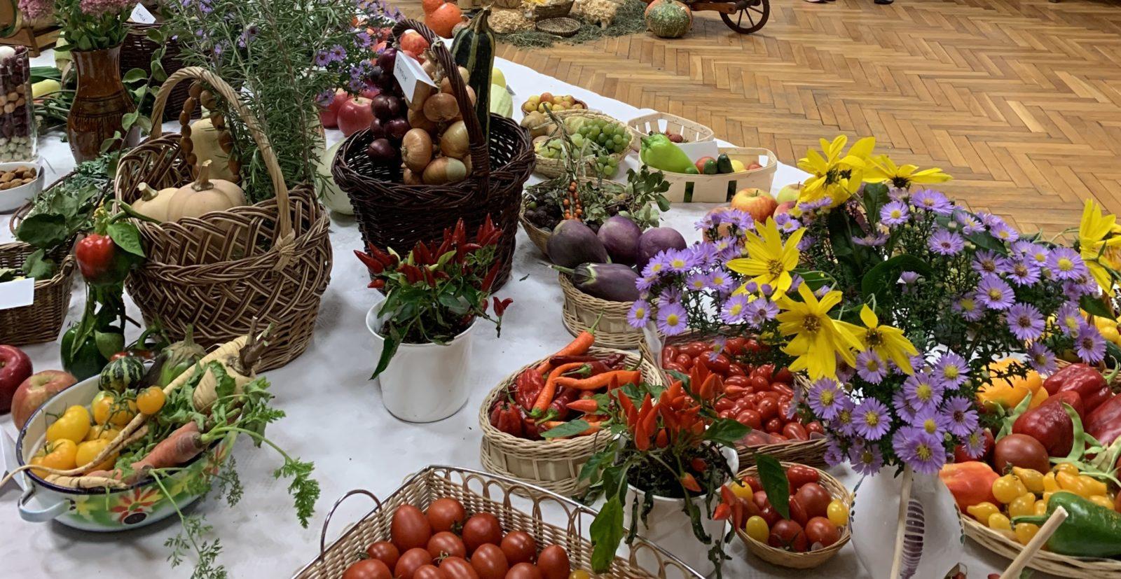 Photo of Výstava ovocia a zeleniny 2019